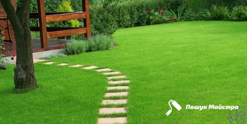 Чем хороша газонная трава во Львове