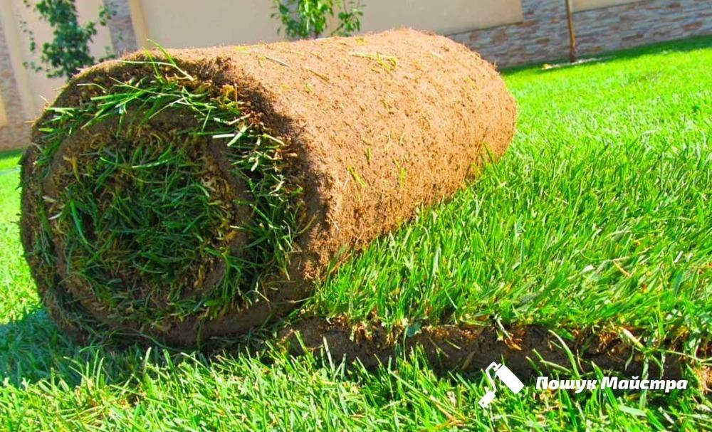Посадка газонной травы: основная технология