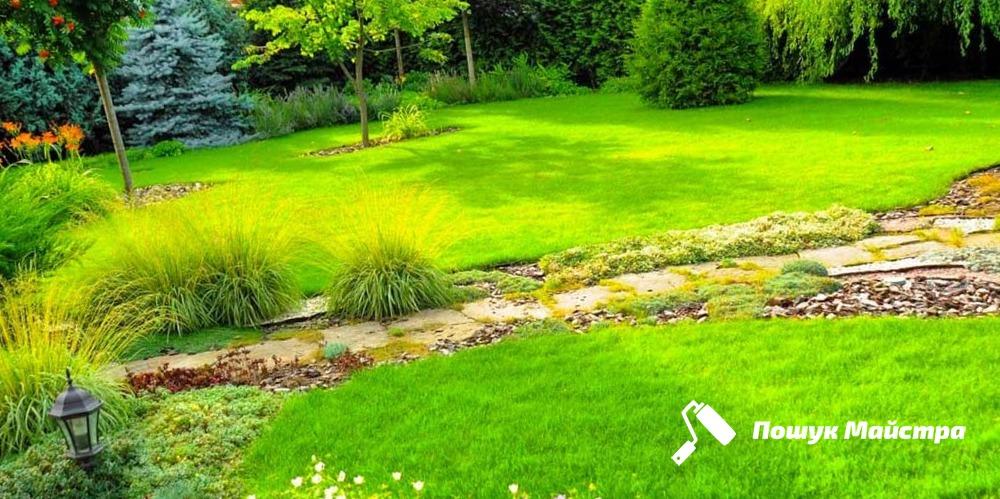 Газонная трава Львов | Посадка газонной травы